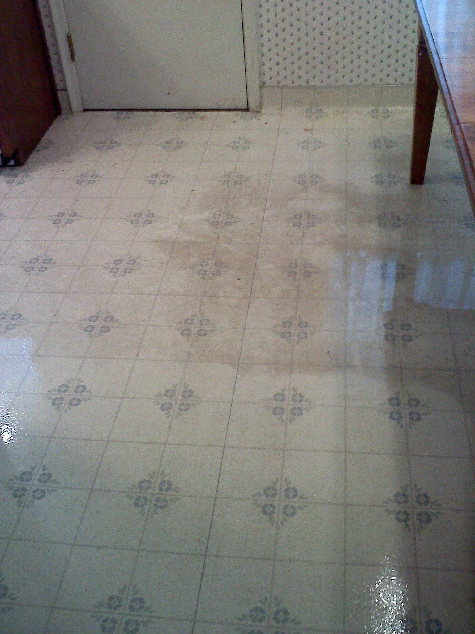 hard floor cleaning example