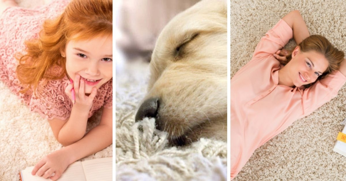 Residential Carpet Cleaning, Pet Stain & Odor Removal Services